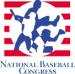 NBC World Series Logo