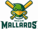 Madison Mallards New Logo