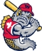 Winnipeg Goldeyes Secondary Logo