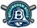 Bellingham Bells New Primary Logo 2011