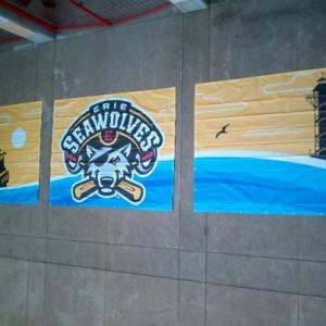 New Banners, Erie SeaWolves Facebook Page