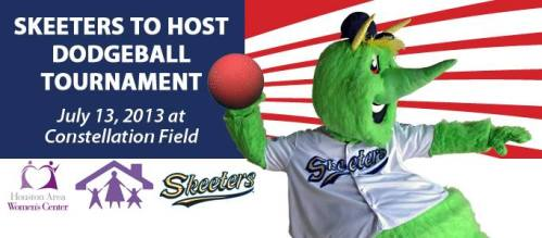 Sugar Land Skeeters Dodgeball Tournament