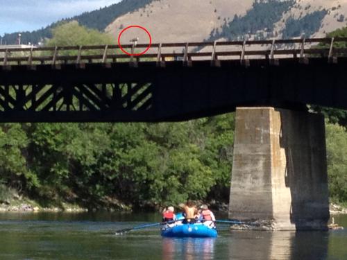 9 Missoula Osprey Float and Bird Eating Fish 8.17.14