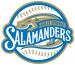 Holly Springs Salamanders Primary Logo