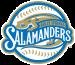 Holly Springs Salamanders Primary Logo