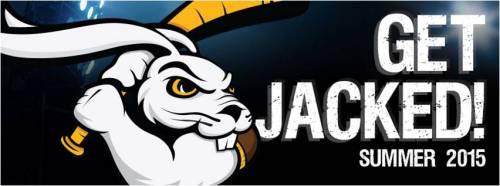 Kokomo Jack Rabbits Get Jacked