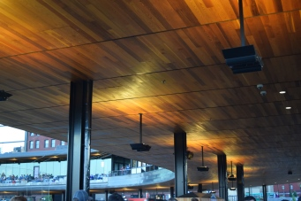 Let's just stop and stare for a minute at the red cedar ceiling.