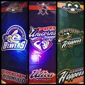 Team logos unveiled, United Shore Professional Baseball League Facebook photo
