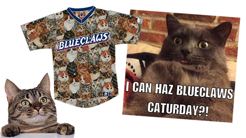 Lakewood BlueClaws Saturday is Caturday
