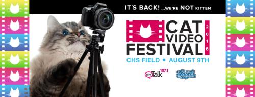 2016 Cat Video Festival